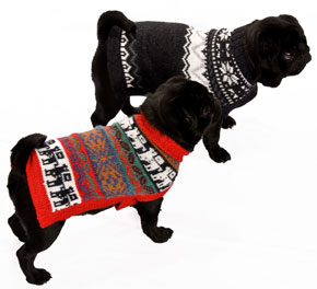 Alpaca Peruvian handknitted Dog Jumpers